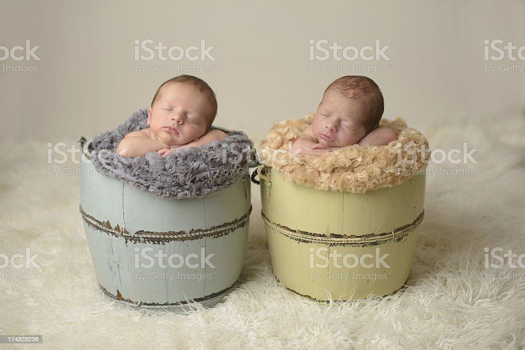 Newborn Twins Sleeping in Buckets royalty-free stock photo