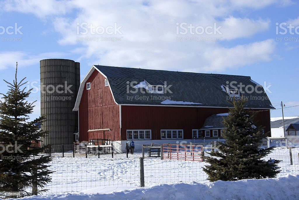 Newer Red Barn in the Snow royalty-free stock photo