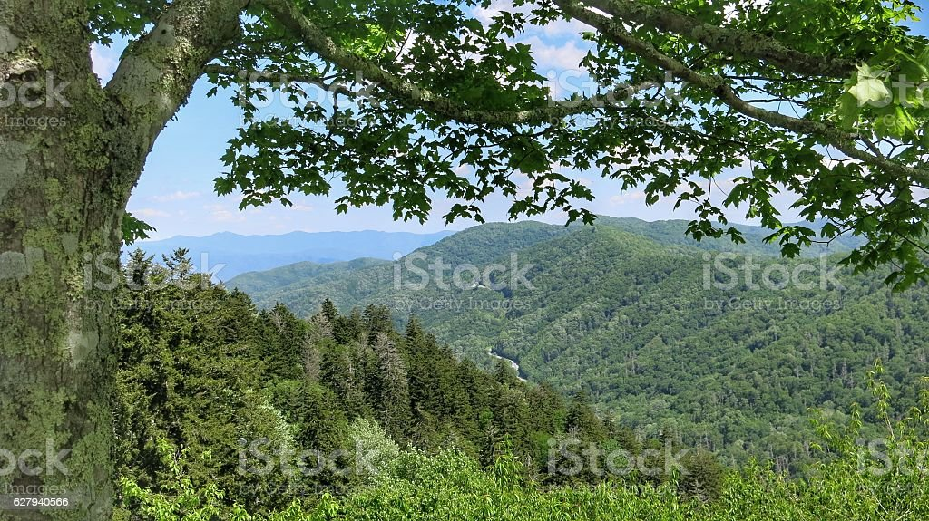 Newfound Gap Road Great Smoky Mountain National Park, Tennessee stock photo