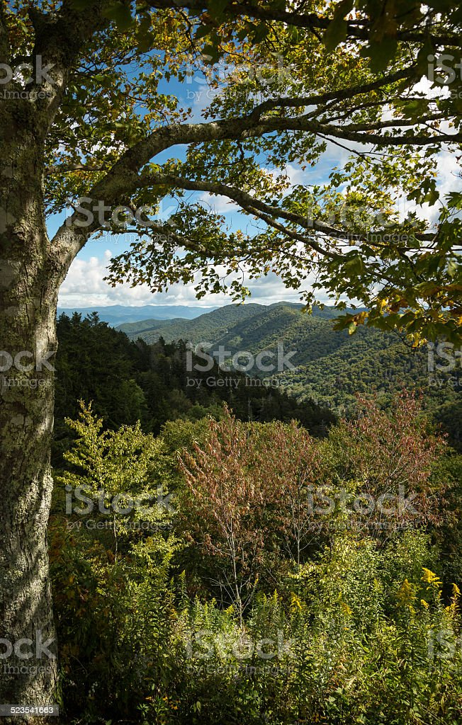Newfound Gap view of the Appalachians stock photo