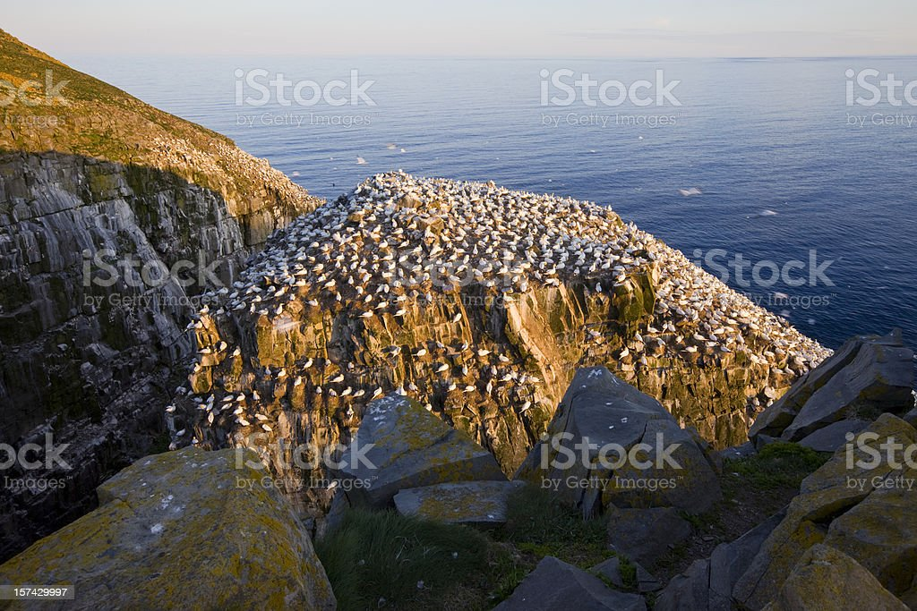 Newfoundland and Labrador, Canada stock photo