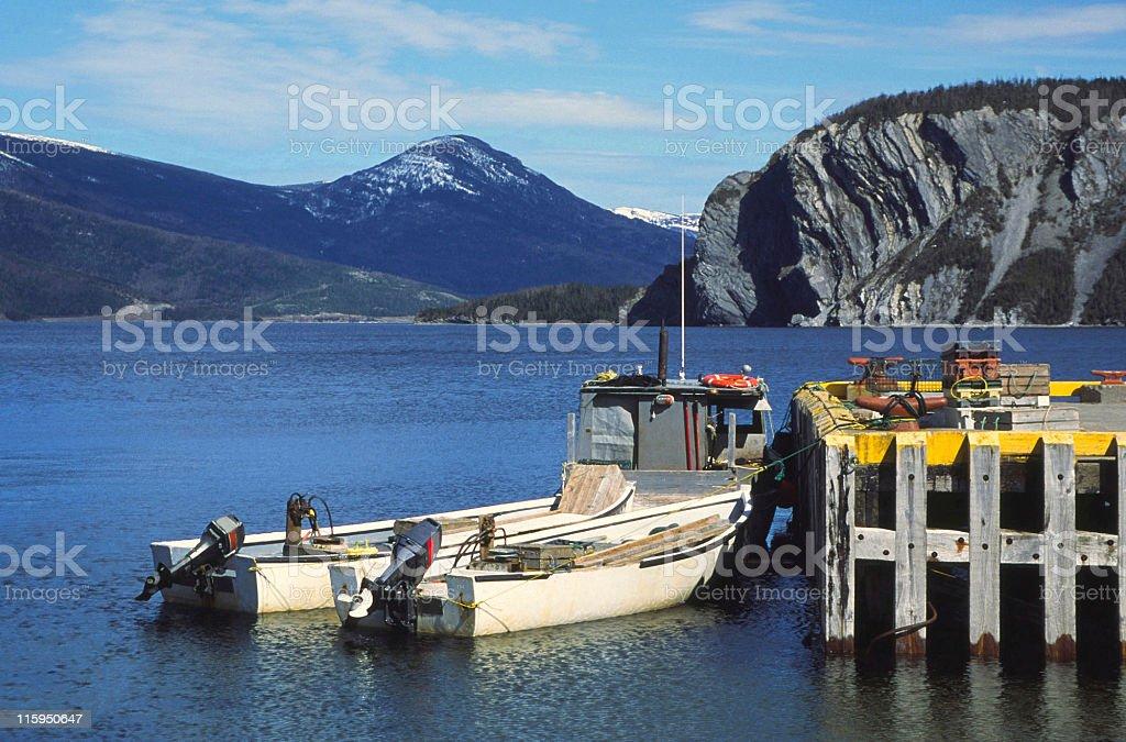 Newfoundland stock photo