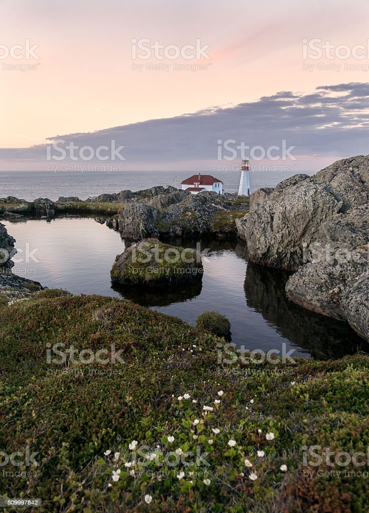 Newfoundland Vertical Sunset with Flowers Pond and Lighthouse stock photo