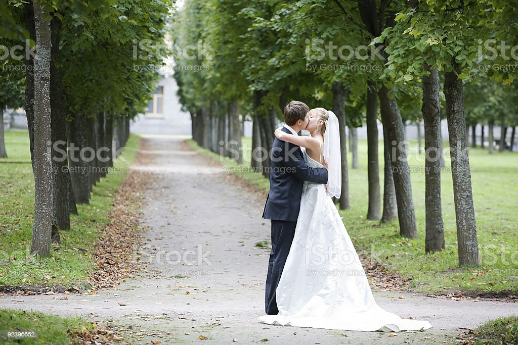 Newly husband and wife kissing In the park royalty-free stock photo