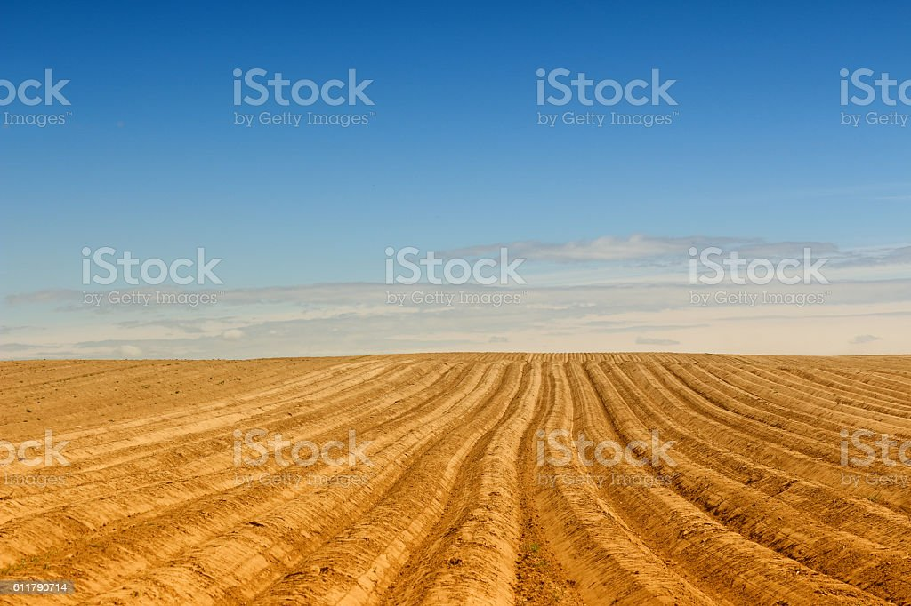 Newly ploughed field stock photo