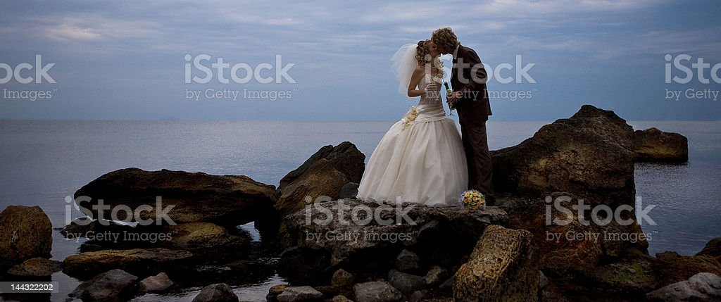 Newlyweds are kissing royalty-free stock photo