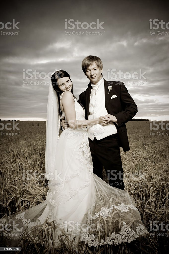Newlyweds in a cornfield royalty-free stock photo