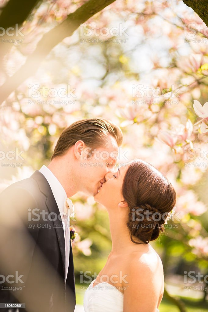 Newlyweds kissing on their wedding day royalty-free stock photo