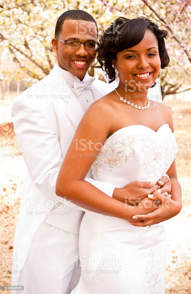Newlyweds royalty-free stock photo