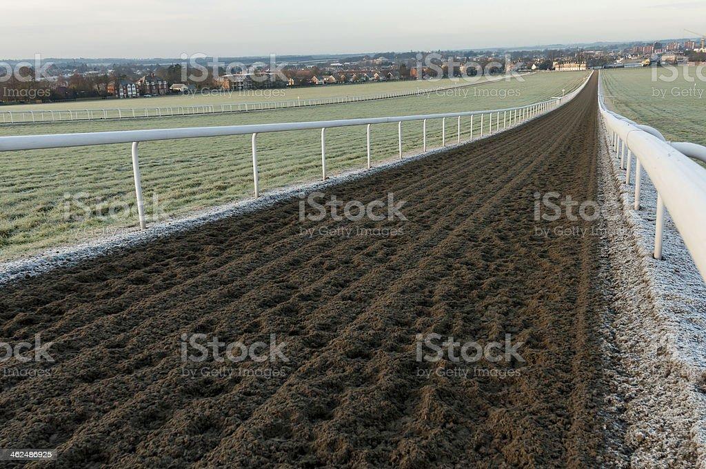 Newmarket gallops stock photo