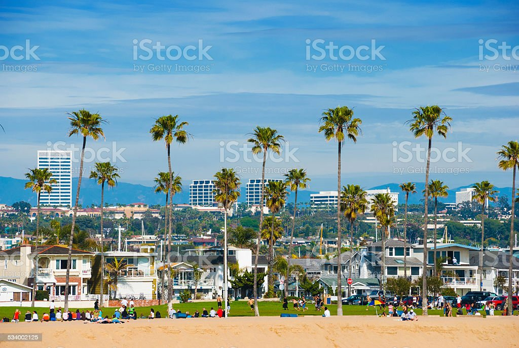 Newport Beach skyline with a park and palm trees stock photo