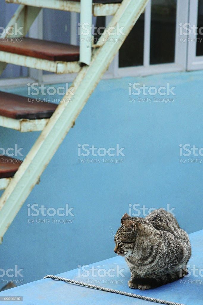 Junto a la escalera foto de stock libre de derechos