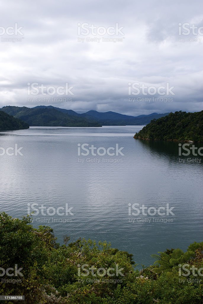 Ngakuta Bay, Marlborough Sounds, New Zealand royalty-free stock photo