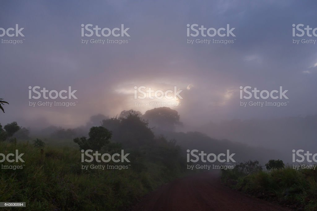 Ngorongoro Crater Fog Landscape stock photo