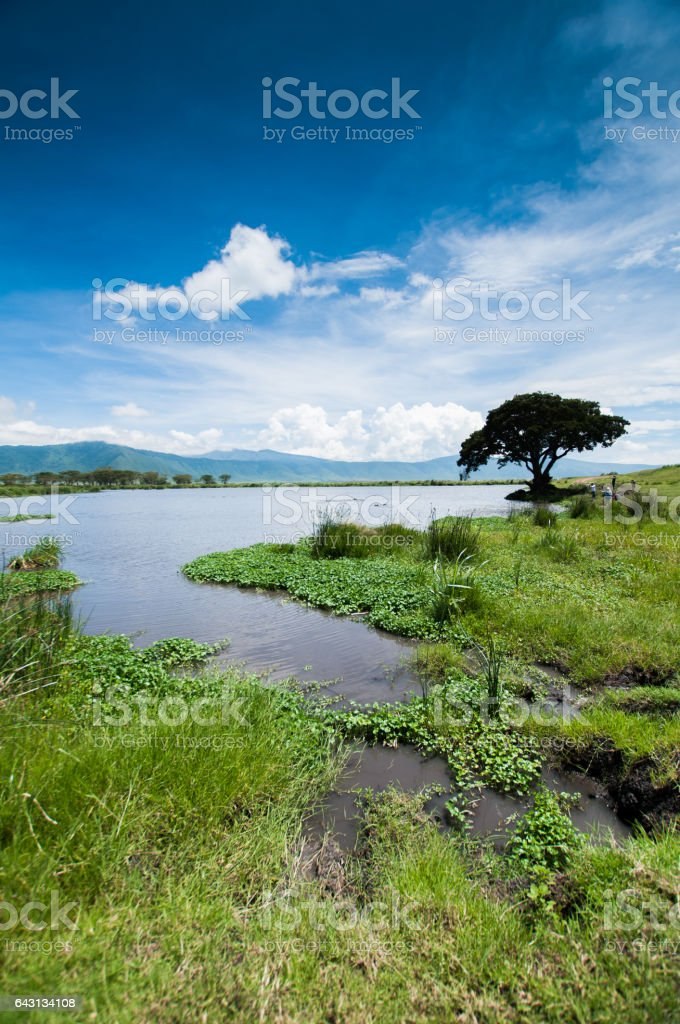 Ngorongoro crater, tanzania stock photo
