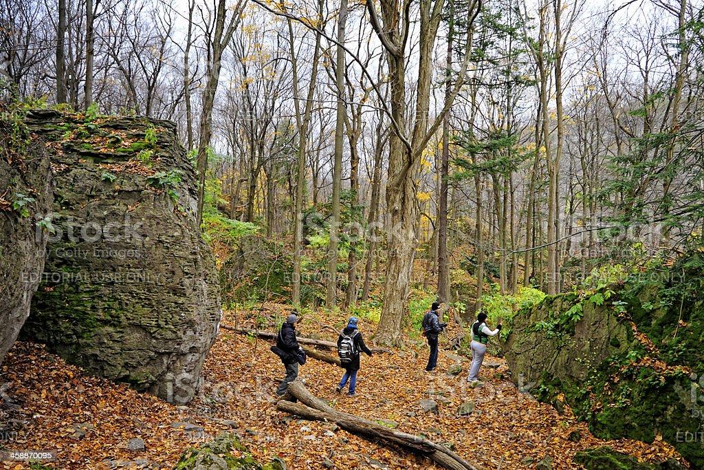 Niagara Glen Trail royalty-free stock photo