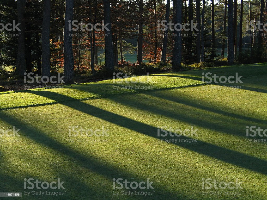 Nice lights on a putting green in Golf course stock photo