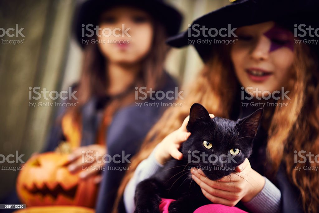 nice little witches stock photo