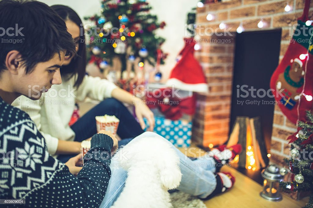 Nice love couple sitting in front of fireplace stock photo