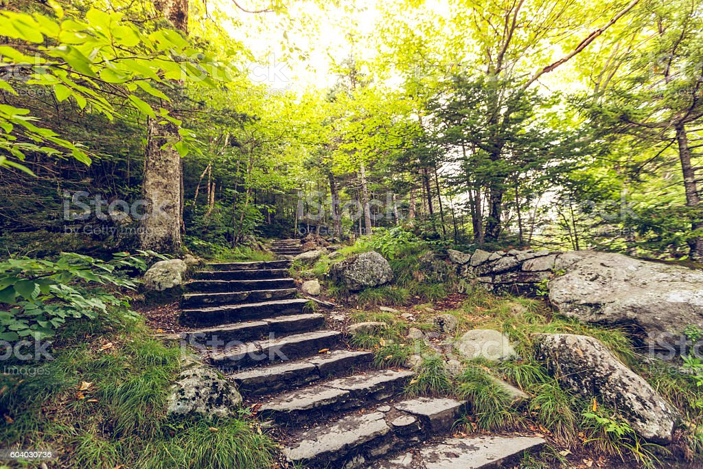 Nice place for a hike today. stock photo