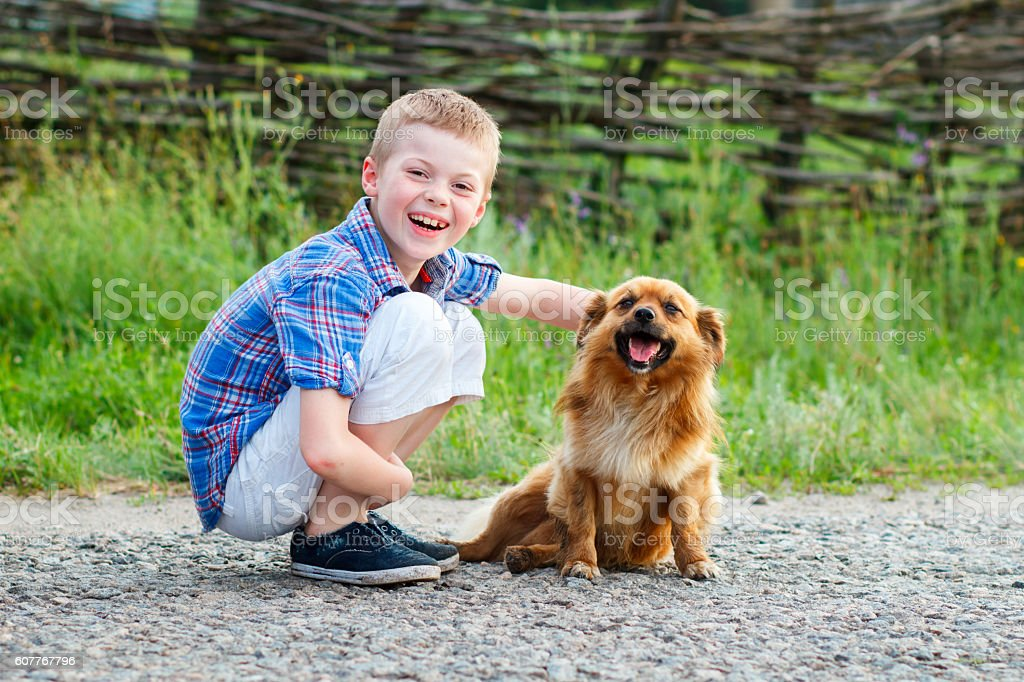 nice smiling boy with a smiling dog. stock photo