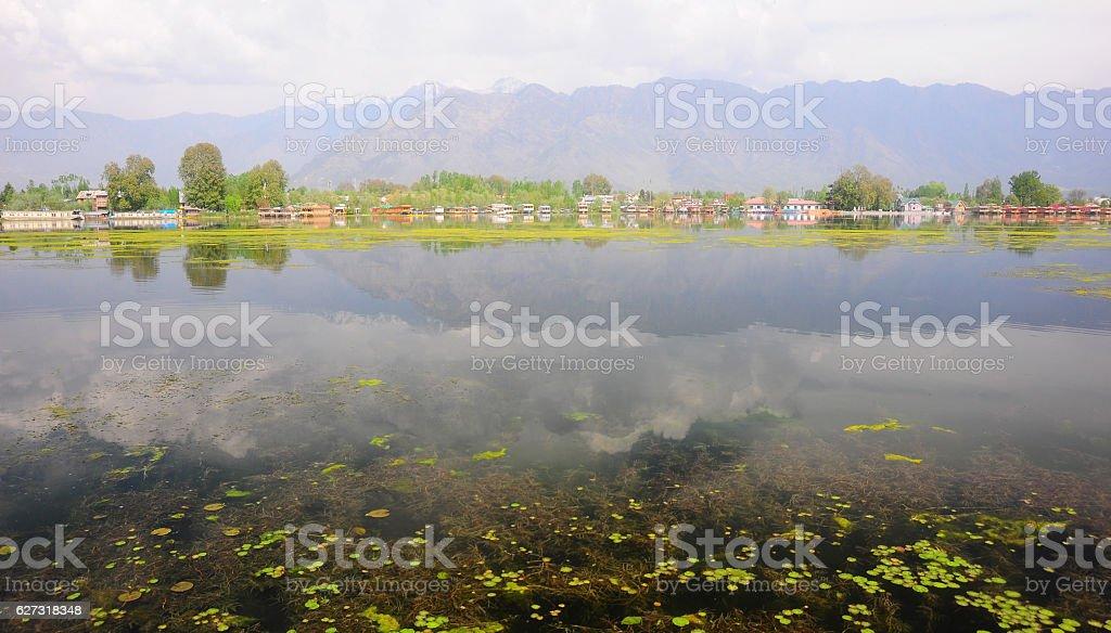 Nigeen Lake in the morning, Kashmir, India stock photo