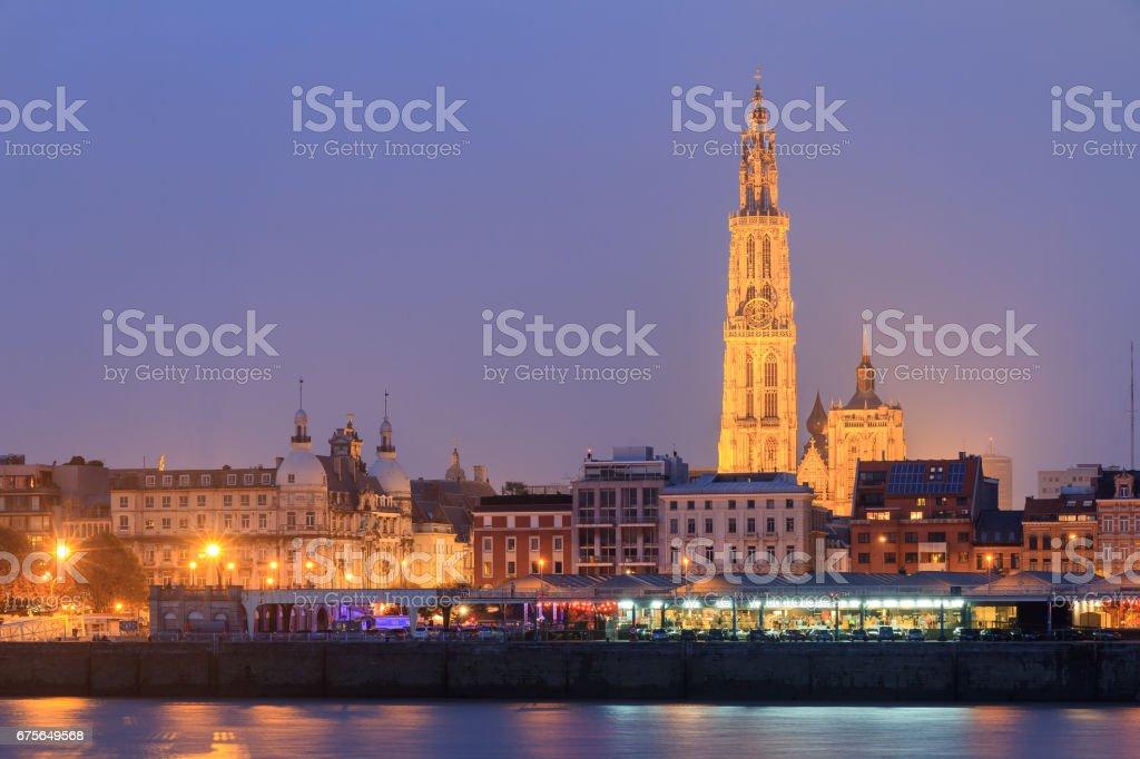 Night Antwerp cityscape stock photo