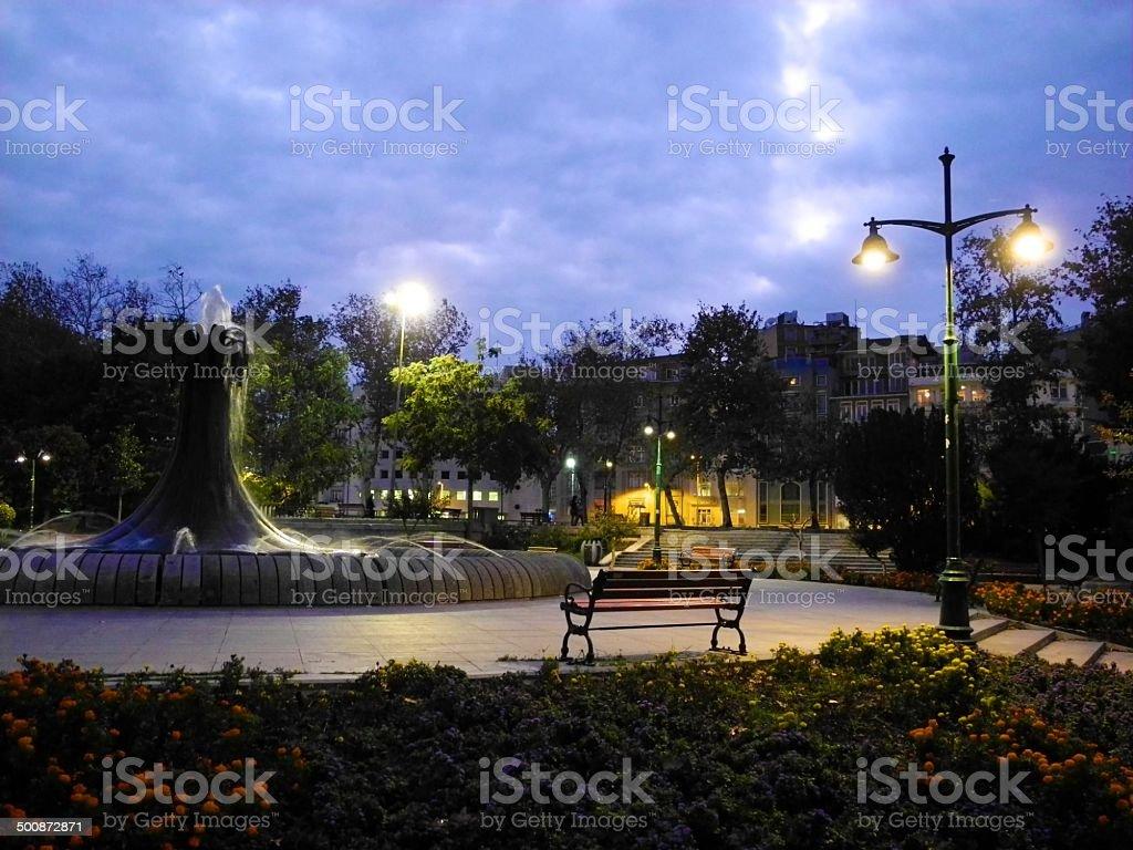 Night at park stock photo