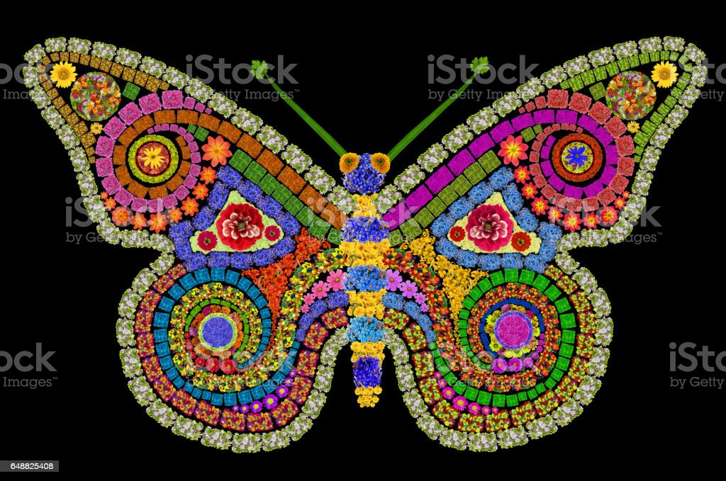 Night big butterfly made from summer flowers in style of a mosaic. Abstract isolated on black handmade collage stock photo