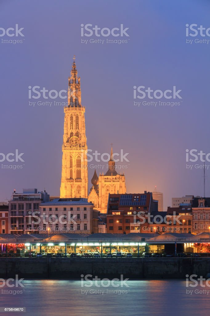 Night Cathedral Antwerp stock photo