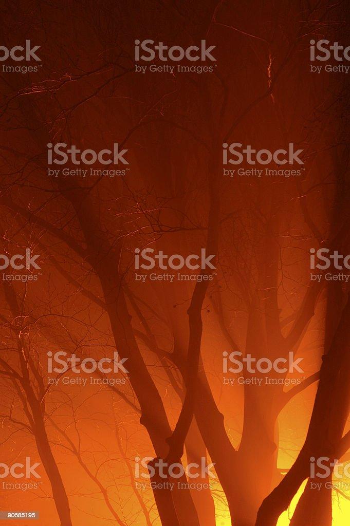 Night fog royalty-free stock photo