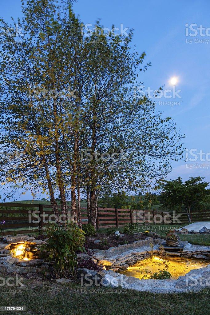 Night garden royalty-free stock photo