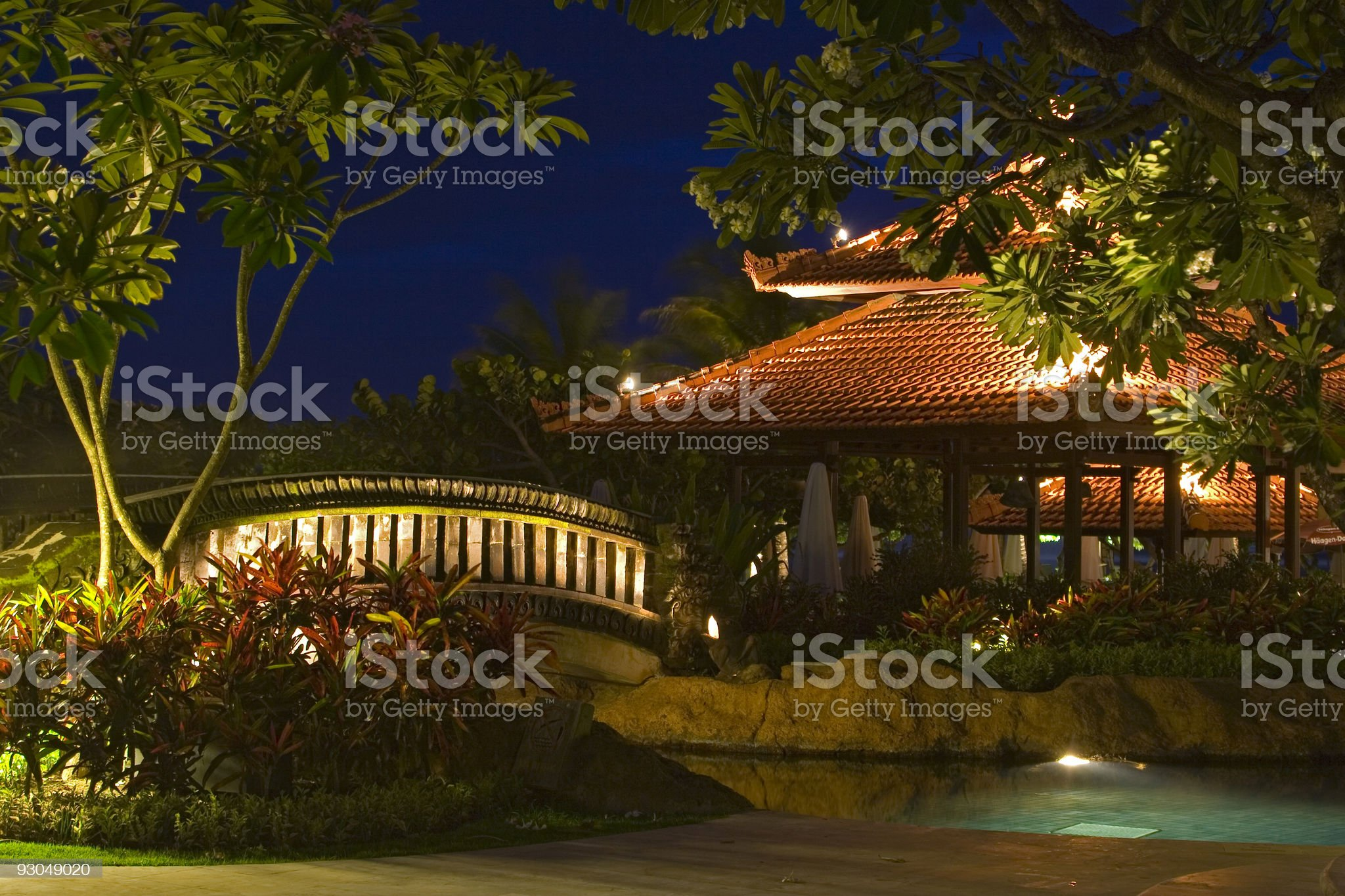 Night landscape with magnolias, little bridge, pool, pagoda royalty-free stock photo