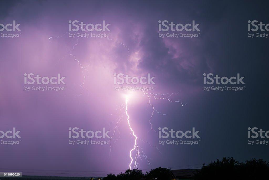 Night lightning over forest stock photo