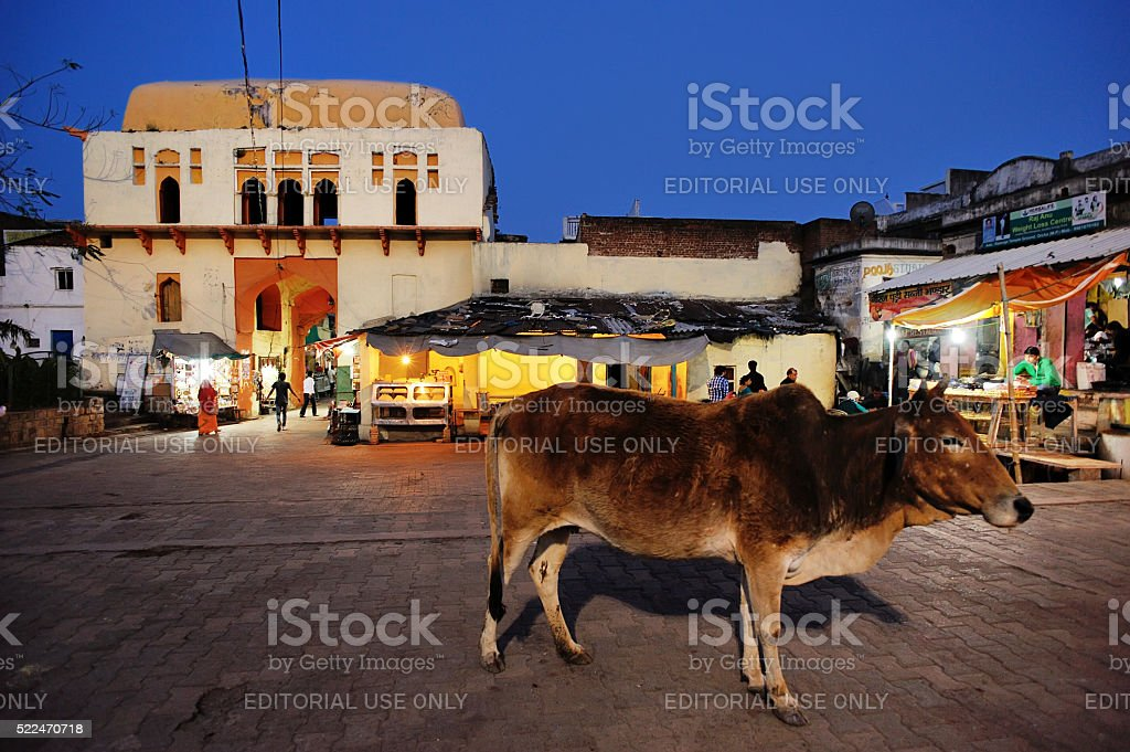 night market in Orchha, before the old Chaturbhuj Temple stock photo