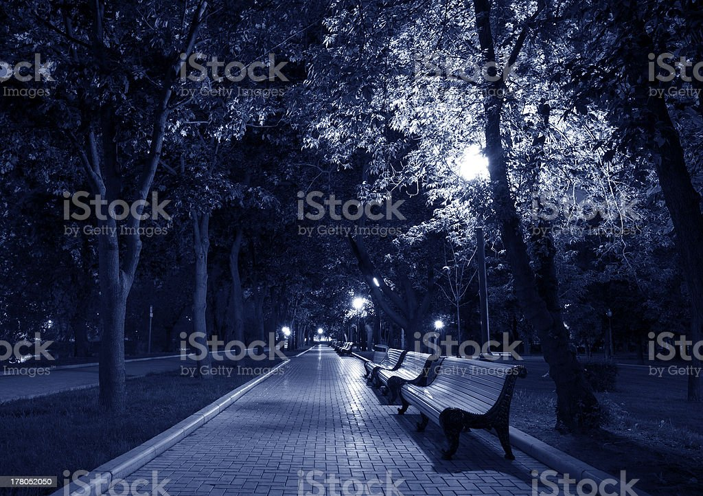 Night Park black white royalty-free stock photo