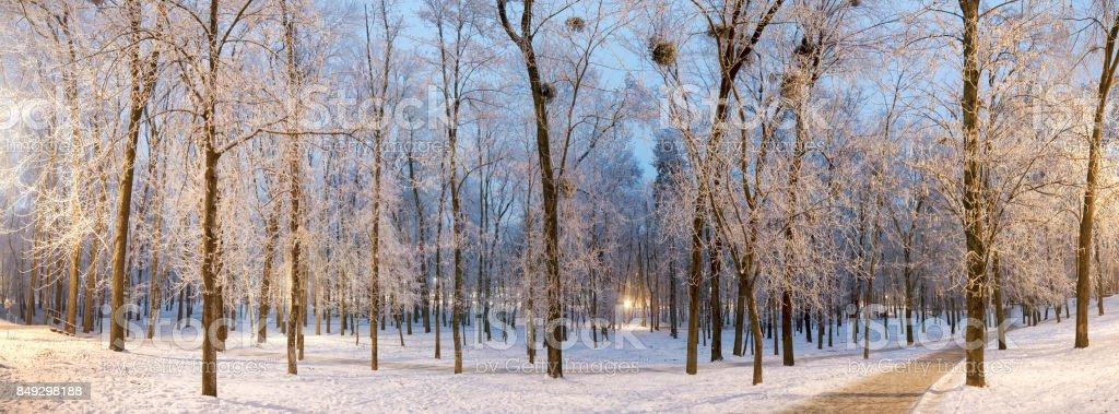Night Park in Kiev Polytechnic Institute stock photo
