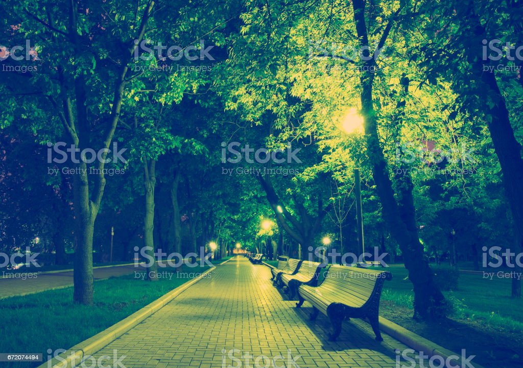 Night Park Wood Benches and Alley stock photo