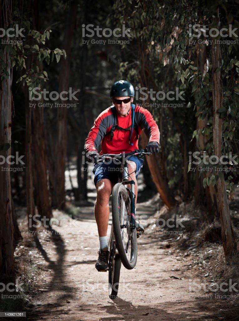 Night Rider royalty-free stock photo