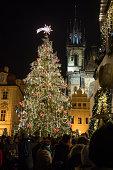 Night scene of Christmas tree in Prague