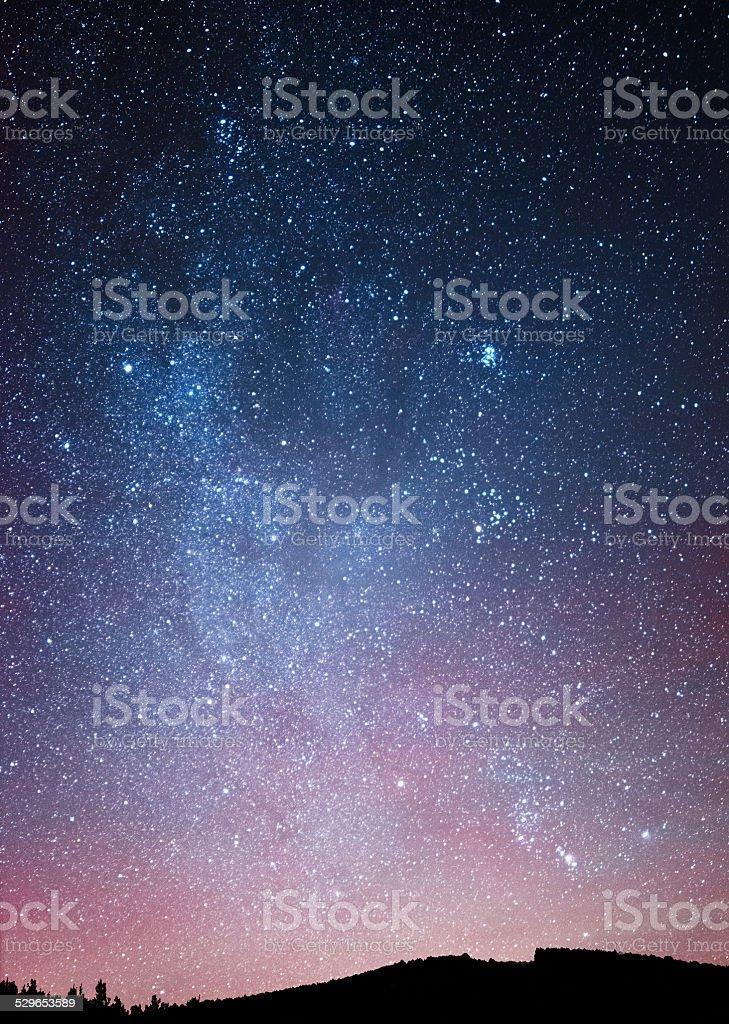 Ciel nocturne au-dessus de la forêt. photo libre de droits