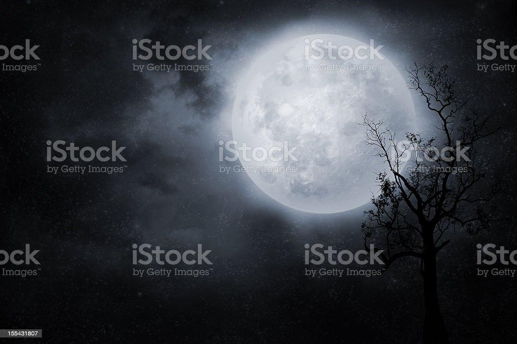 Night sky royalty-free stock photo