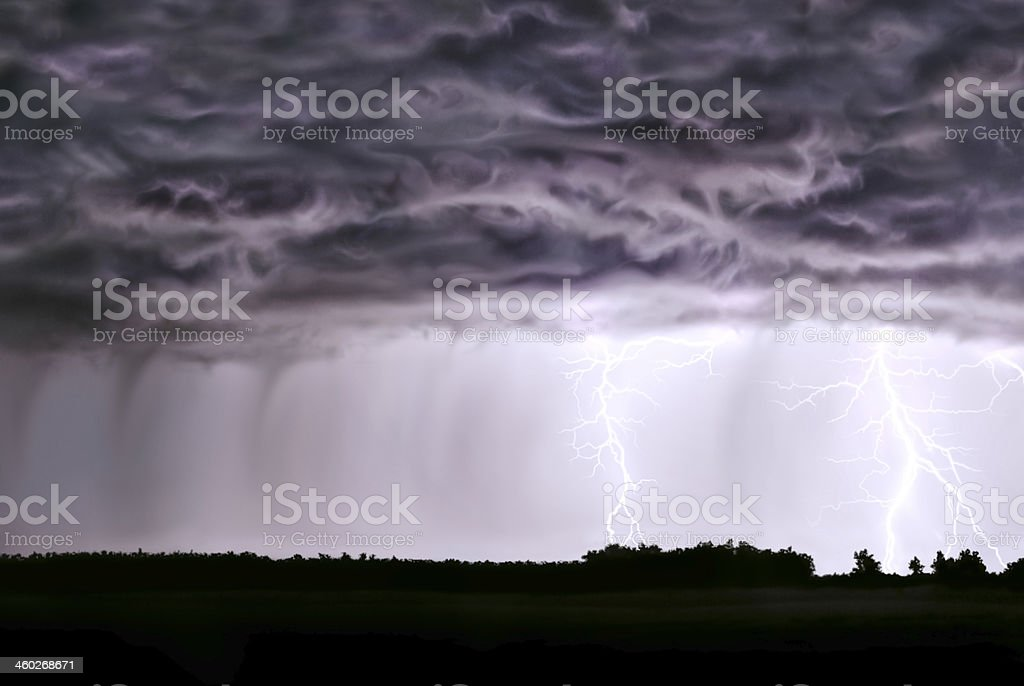 Night thunderstorm,rain,lightning,in field of the forest. stock photo