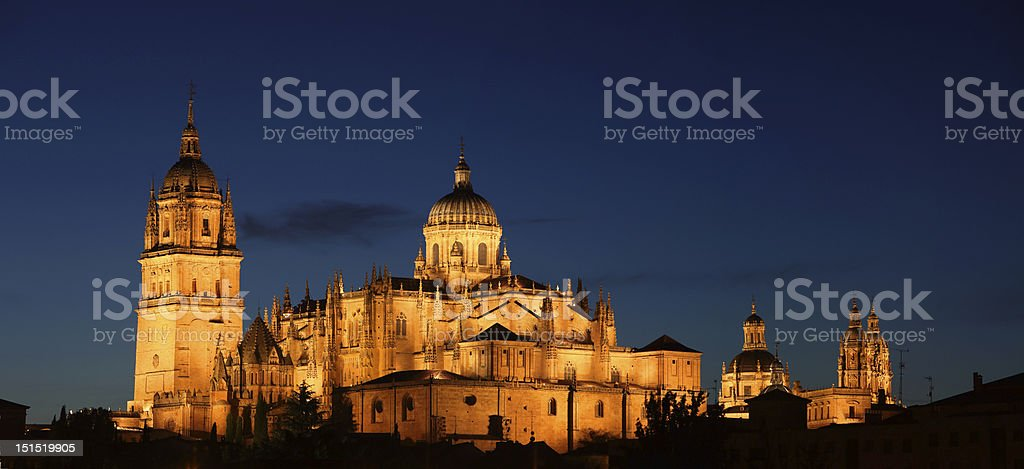 Night view on the Cathedral of Salamanca, Spain stock photo