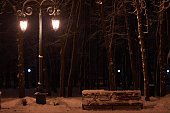 night winter public park