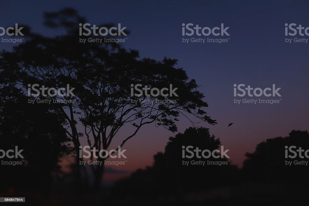 nightfall scene stock photo