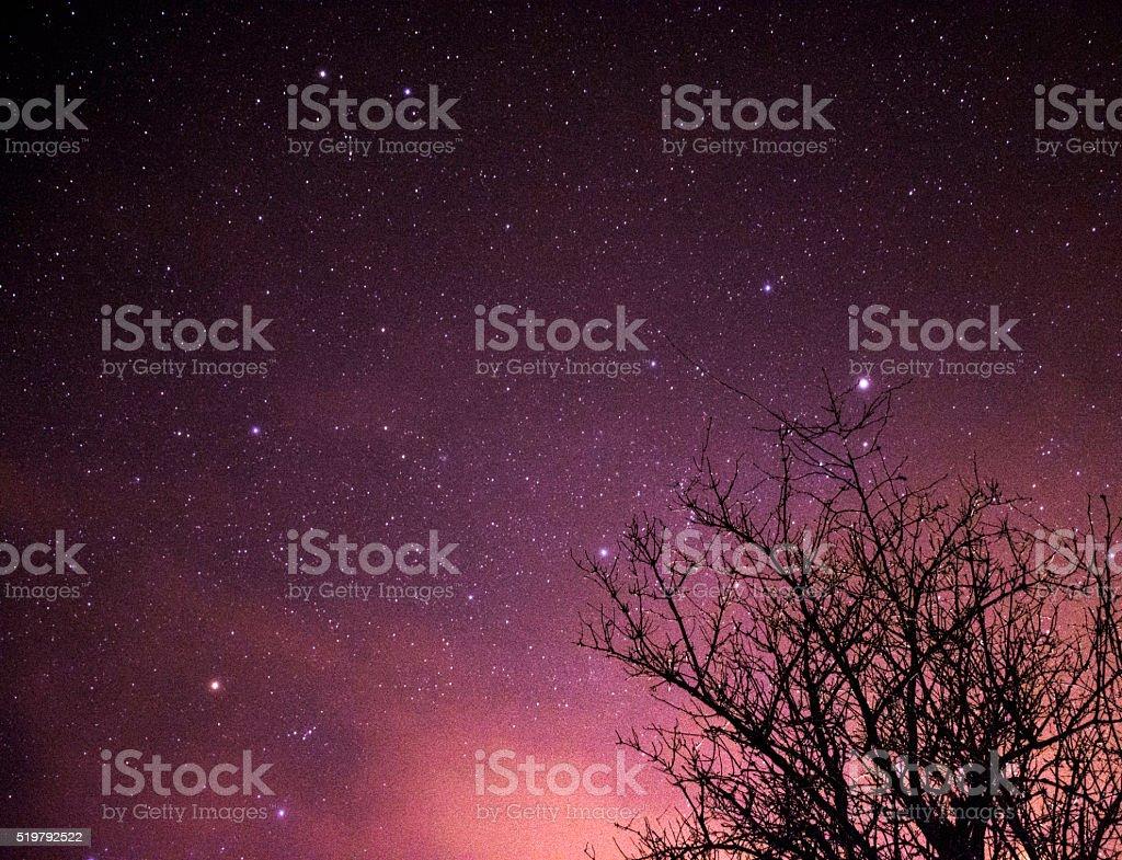 Night's treasures stock photo