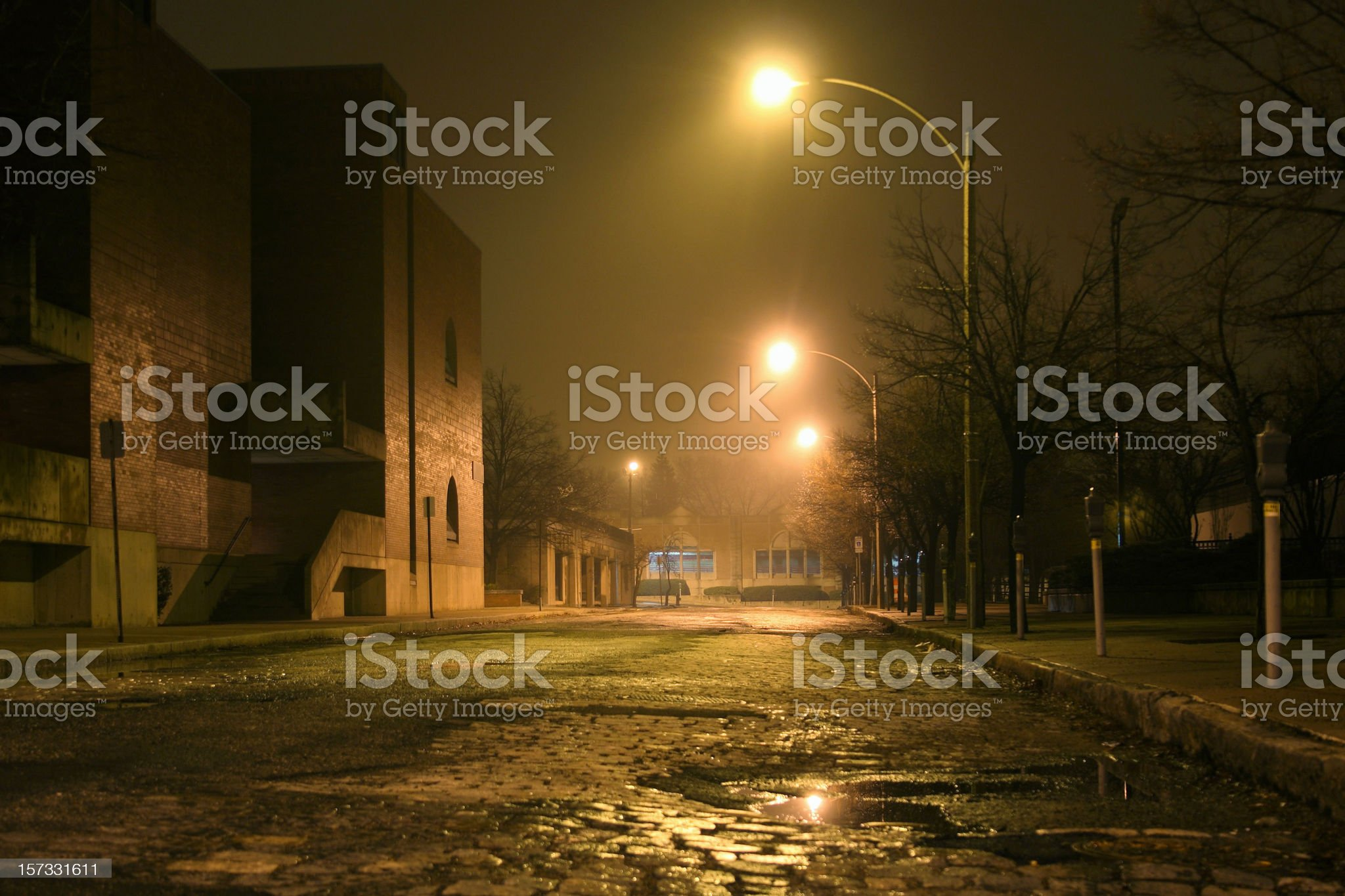 Nighttime Mist royalty-free stock photo