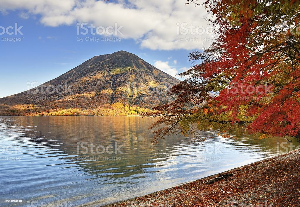 Nikko National Forest in Japan stock photo