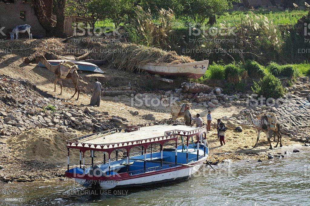 Nile Life stock photo